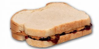 Peanut Butter ALTERNATIVE and Jelly Sandwich